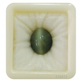 Cats Eye Gemstone Std 10.2 CT (17 Ratti)