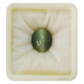 Natural Cats Eye Fine 11+ 6.6ct