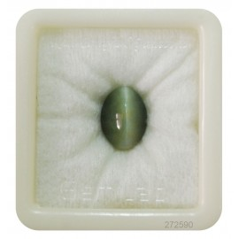 Astrological Cats Eye Premium 8+ 5.05ct
