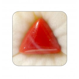 Natural Red Coral Triangular 27+ 16.35ct