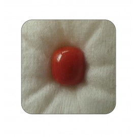 Certified Red Coral Premium 6+ 3.65ct